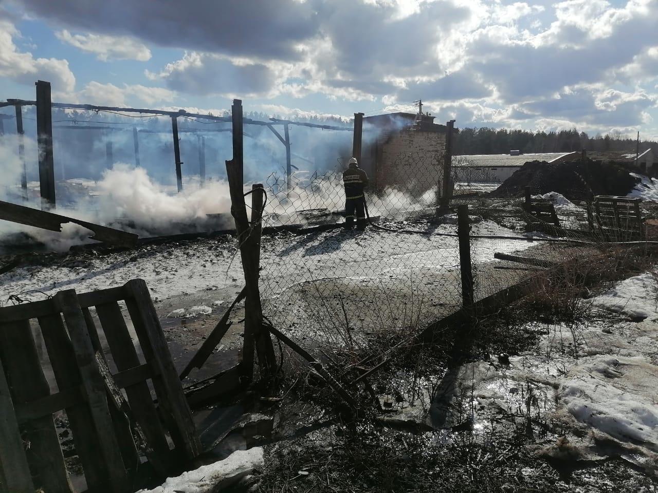 Пожар Меленковский район, д. Кесово