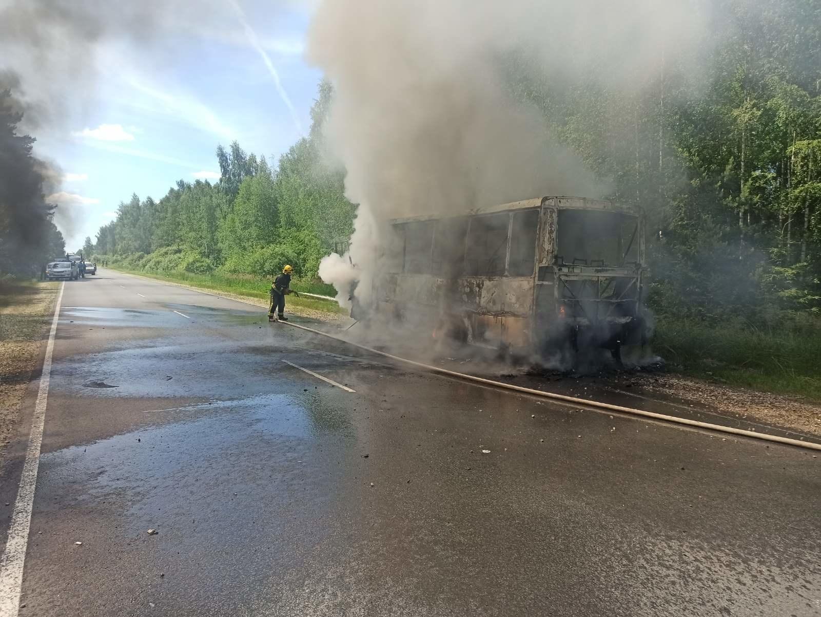 Пожар Камешковский район автомобильная дорога Хохлово-Камешково-Ручей 5 км.