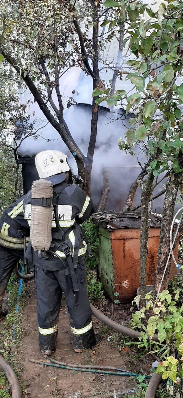 Пожар г. Александров, СНТ «Геологи»